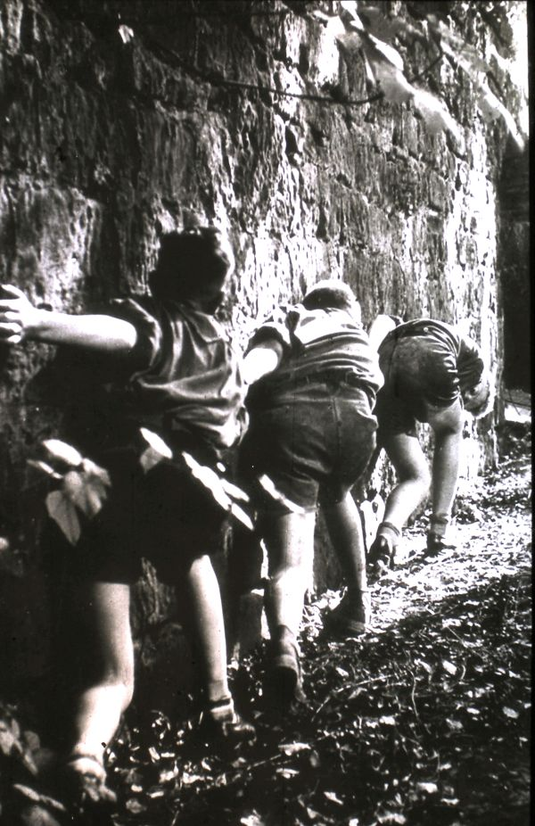 1956 (26)